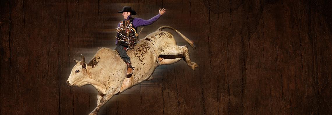slider-2017-bronc-rider