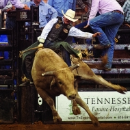 franklin-rodeo-bullriding
