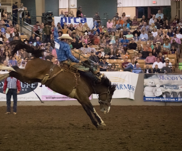 Franklin Rodeo Longest Running Annual Event In