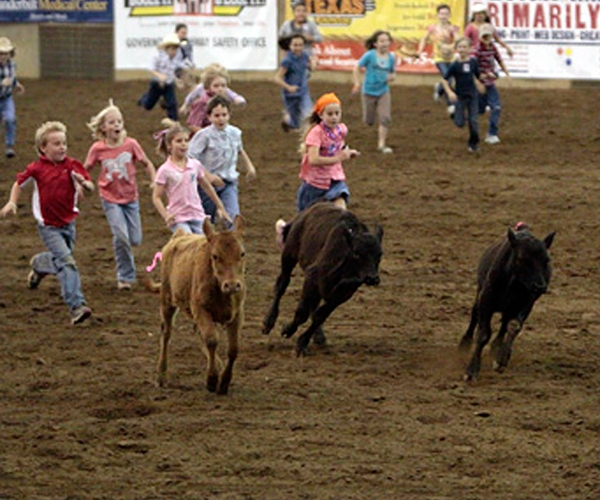 Events Franklin Rodeo