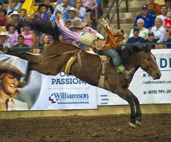 rodeo-events-bareback-riding