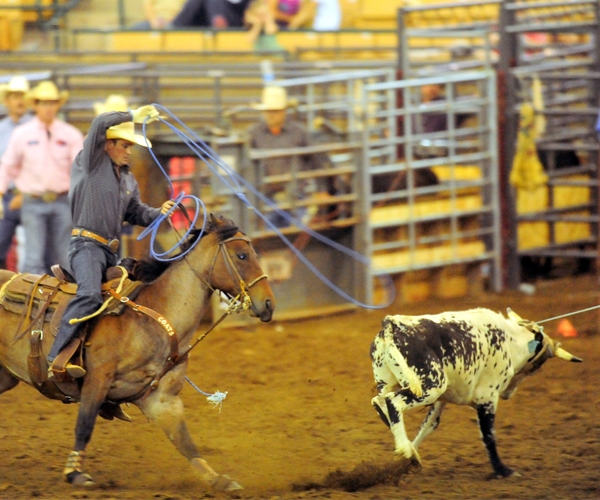 rodeo-events-team-roping