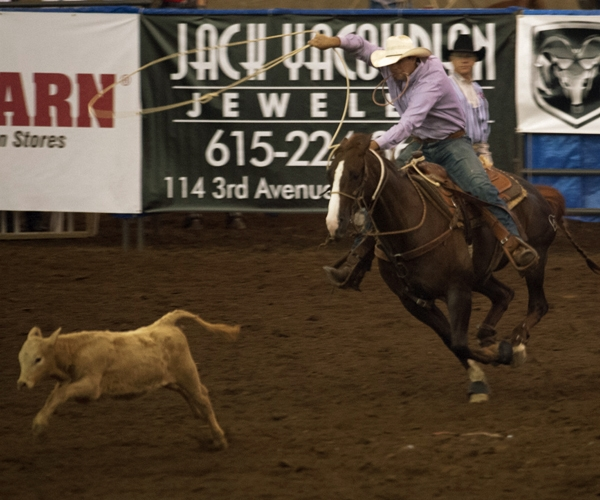 rodeo-events-tie-down-roping